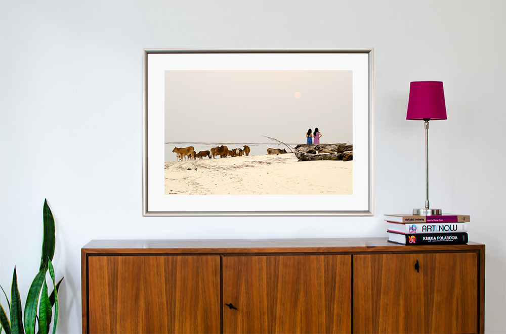 Borneo-Mantanani-Island-krowy-i-dziewczyny-na-plazy-przed-zachodem-slonca-fotografia-do-wnetrza